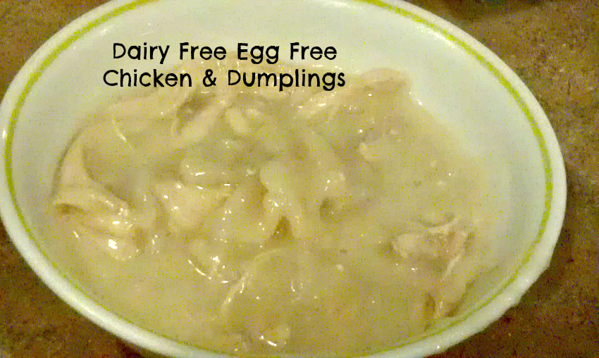 Dairy Free Egg Free Chicken & Dumplings